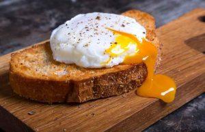 desayuno proteína huevo