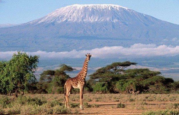 Danny MacAskill escala el Kilimanjaro y desciende en bici