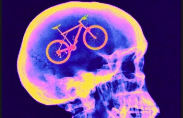 Si practicas mountain bike eres más inteligente