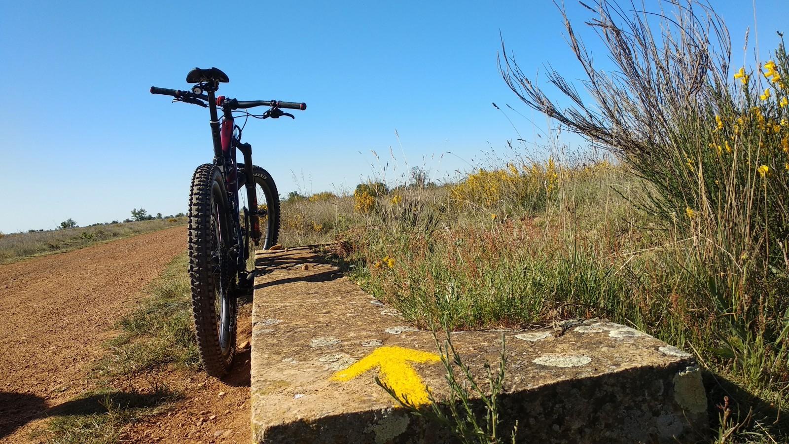 bicicleta-camino-santiago/