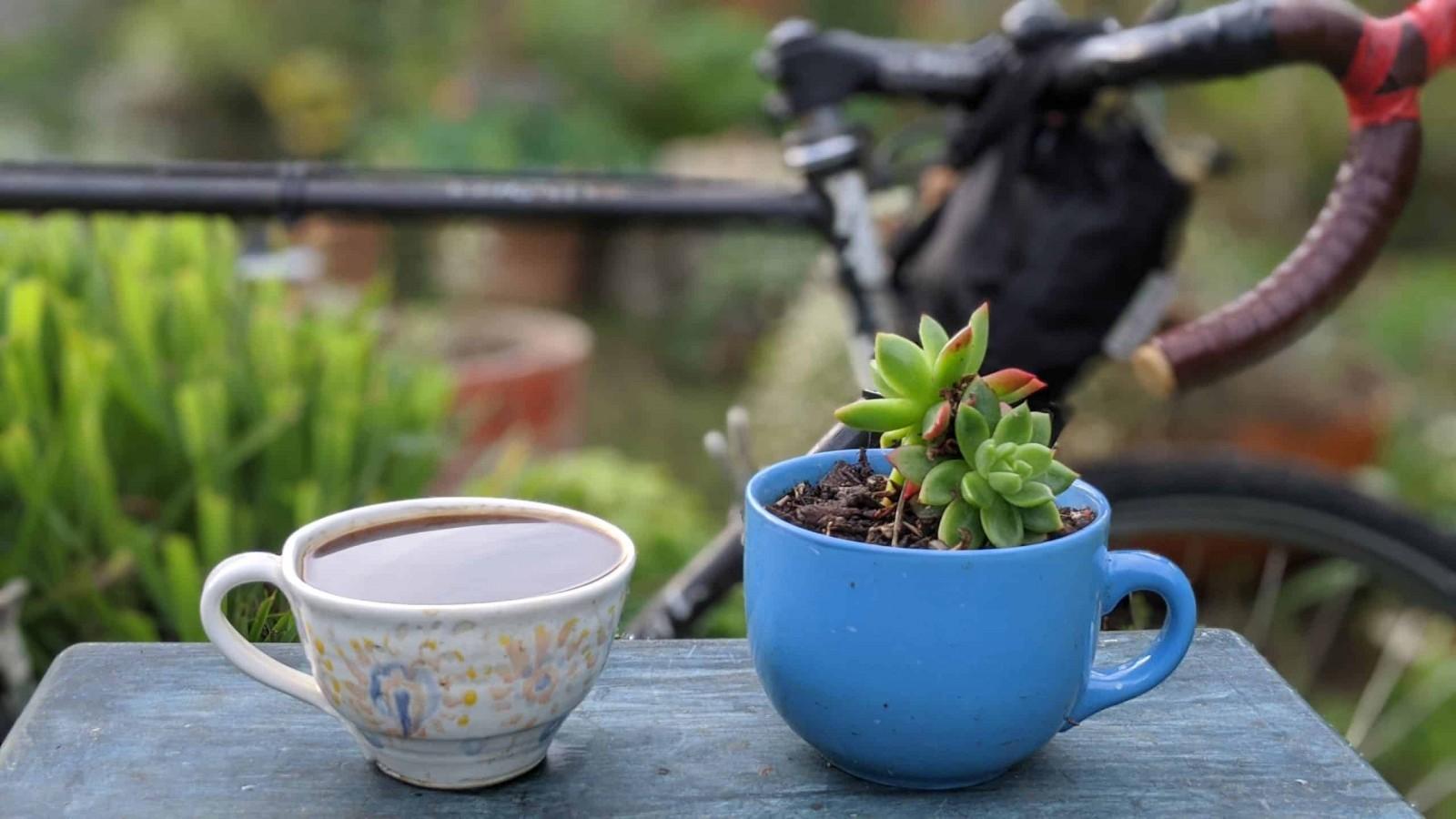 resetear-potenciar-cafeina/
