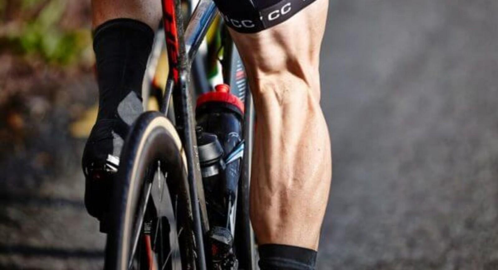 perder-grasa-ciclismo/