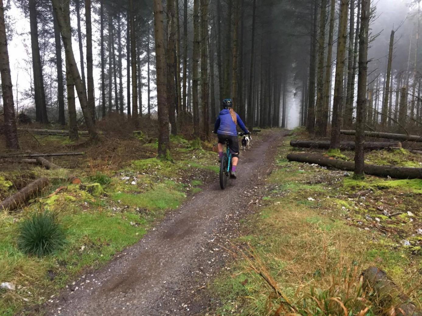 ventajas-salir-solo-bicicleta/
