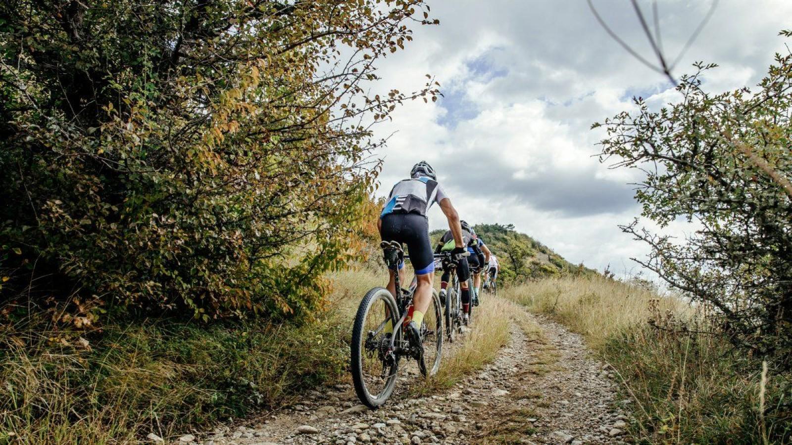 mejorar-forma-divertirse-bici/