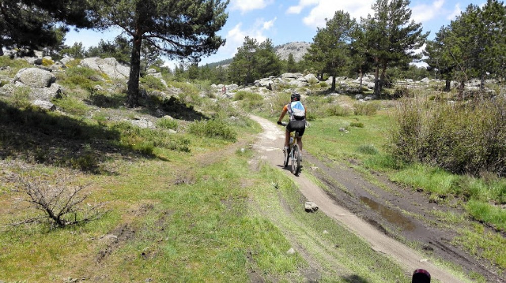 mountain bike, Madrid