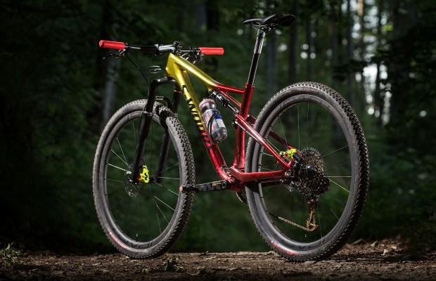 Specialized 2019, estas son sus mejores mountain bike