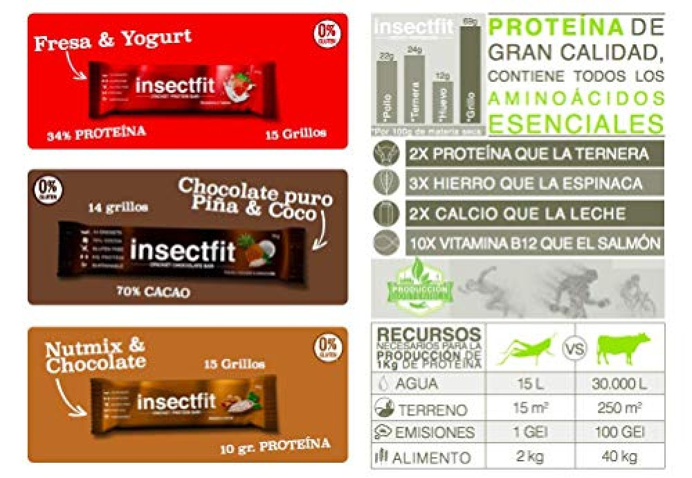 insectfit-barritas-energeticas-insectos