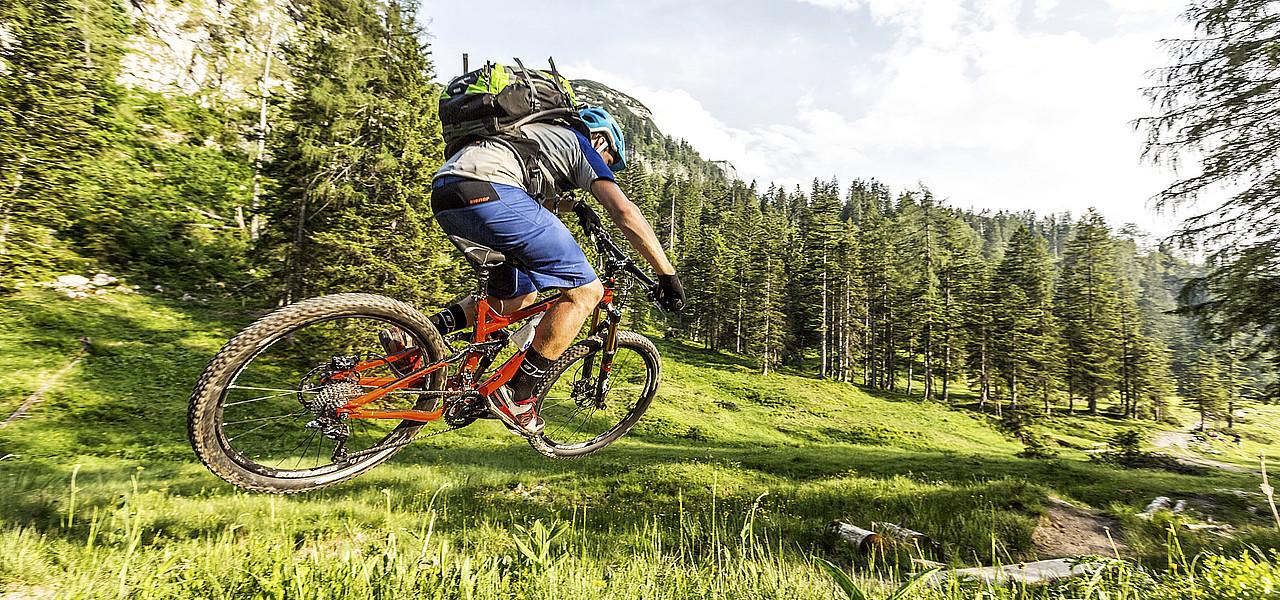 Ciclismo de carretera vs mountain bike, ¿por qué modalidad decantarse?