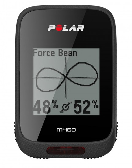 Polar M460